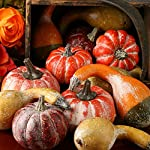 Factory-Direct-Craft-Fall-Artificial-Gourds-and-Pumpkin-Table-Scatters-for-Displaying-Crafting-and-Embellishing