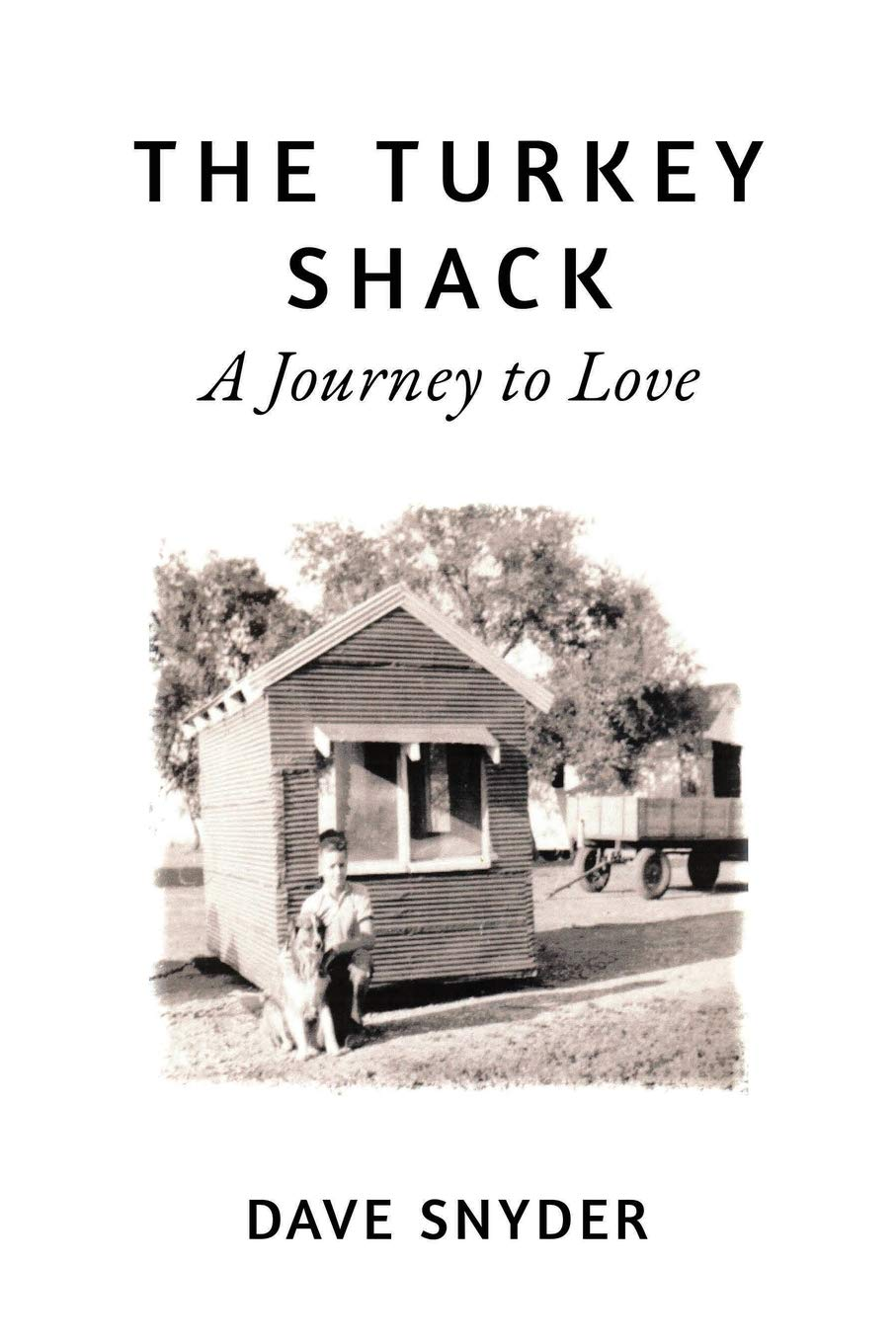 The Turkey Shack: A Journey to Love ebook