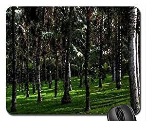 fantastic palm tree forest hdr Mouse Pad, Mousepad (Forests Mouse Pad, Watercolor style)