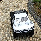 HUKOER RC Car - High Speed Flexible Remote Control Top Race Rock Crawler with 1:16 Scale 2.4G 4WD Off Road Remote Control RC Car (White)