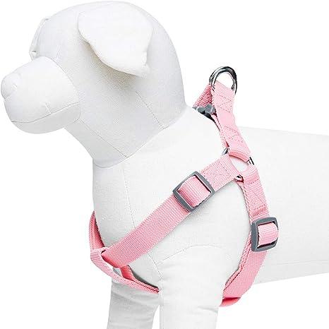 Umi. Essential Classic - Arnés para perros L, contorno del pecho ...