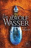 Zwölf Wasser Buch 2: In die Abgründe: Roman (12-Wasser-Trilogie, Band 24966)