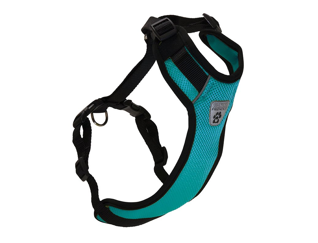 Canine Friendly Vented Vest Harness, Small, Teal