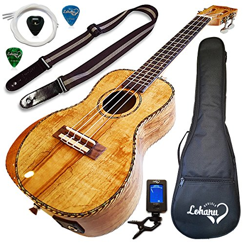 Ukulele Amazing Looking Spalted Maple With Armrest Glossy Finish With 3 Band Electric EQ Pickup (Concert) by Lohanu
