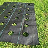 Agfabric Easy-Plant Weed Block for Raised Bed Outdoor Garden Weed Rugs Garden mat 3.0oz, 4'x12',with Planting Hole Dia 6''