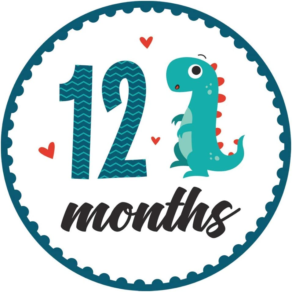 - 4 in Round 16 Stickers - Dinosaur HarperLynn Baby Monthly Milestone Stickers Fits Memory Planners