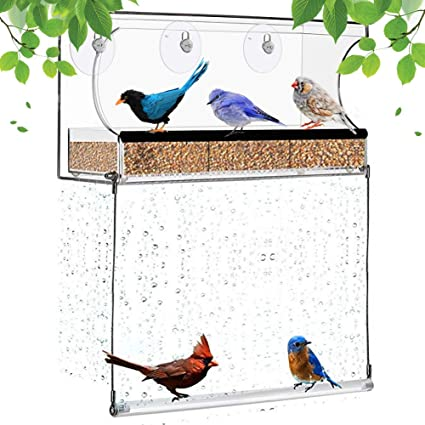 Window Bird Feeder For Outside With Strong Suction Cups And Seed Tray Kits Drain Holes Indoor Wild Bird Watching Garden Outdoor