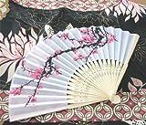 Cherry Blossom Silk Fans, Health Care Stuffs