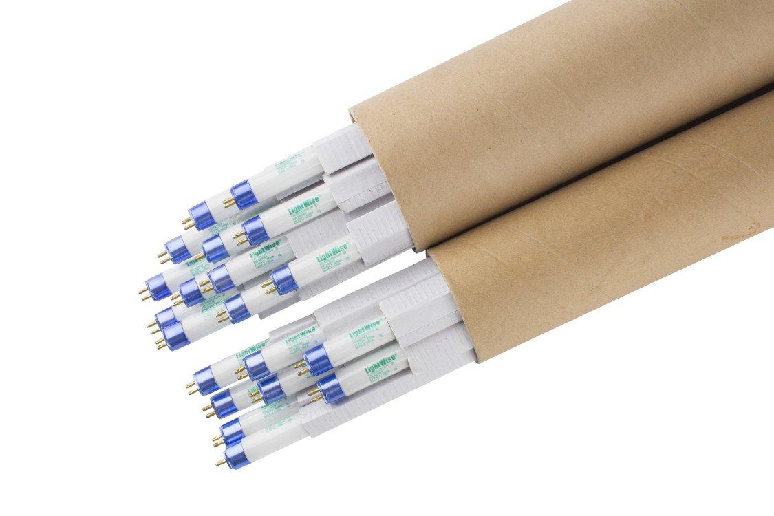 Lightingwise 2 FT 6500K T5 HO Fluorescent Grow Light Bulbs - Pack of 1,4,8,20,40 (20, 6500k - blue - veg)