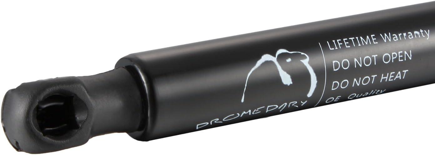 Dromedary Lot de 2 176609 Ressort /à gaz pour hayon de coffre
