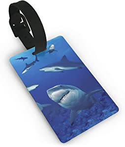 SHARP-Q Shark Fashion Luggage Tags For Suitcases PVC Baggage Cards