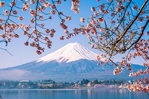 Fuji Photo Prints - Mount Fuji and Cherry Blossoms Photo Art Print Poster 12x18 inch