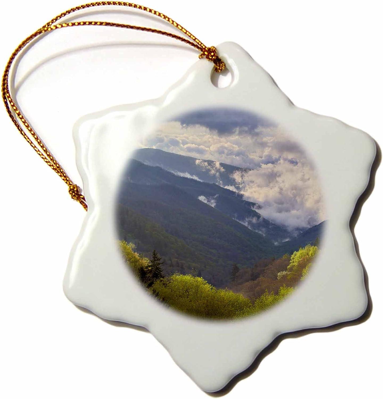 3-Inch Autumn Nc-Us34 Aje0107-Adam Jones-Snowflake Ornament 3dRose ORN/_93179/_1 Blue Ridge Parkway Appalachian Mountains Porcelain