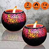U2C Scented Candle Gift Set, Handmade 7.4oz x 2 Pack Scented Lavender Travel Candle, Large Glass 100% Soy Wax Candle for Stress Relief and Aromatherapy, Indoor and Outdoor Use