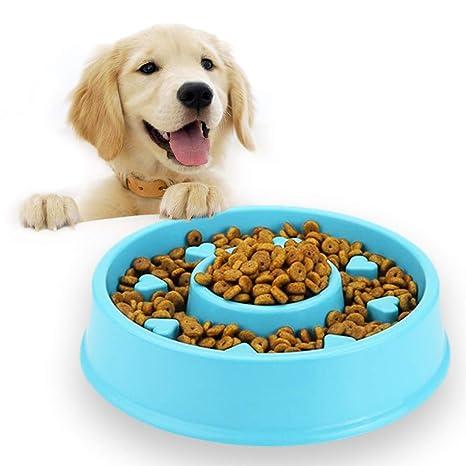 Andiker - Cuenco para Comida para Mascotas, Antideslizante, para ...