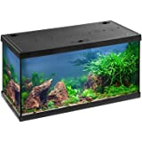 Eheim Aquarium komplett Set Aquastar 54 LED, Süßwasser Aquarien Set 60x30x30cm, 54 Liter