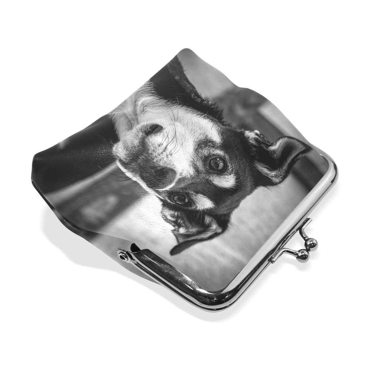 LALATOP Puppy Womens Coin Pouch Purse wallet Card Holder Clutch Handbag