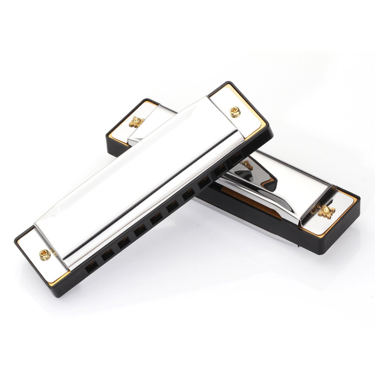 Armonica diatonica a 10 fori in argento Blues armonica a bocca diatonica Armonica a 10 fori in lega di strumenti musicali Armonica a bocca Colore: argento
