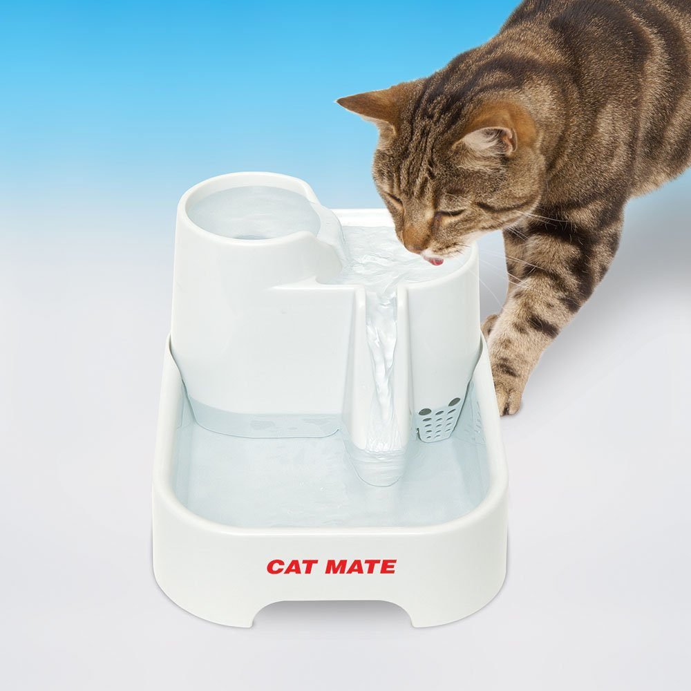 Amazon.com : Cat Mate Pet Fountain - 70 Fluid Oz. : Pet Self ...