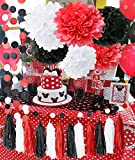 minnie mouse school supplies - Minnie Mouse Party Supplies White Black Red Baby Ladybug Birthday Party Decorations/ First Birthday Girl Decorations Tissue Paper Pom Pom Tassel Garland Minnie Mouse Birthday Party Decorations