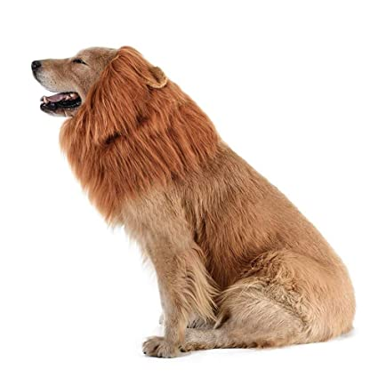 728812ea5 Amazon.com : AOFITEE Dog Lion Mane Costume - Pet Cute Lion Wig Headband  Halloween Party Costumes Fancy Dress, Brown Lion Hair for Medium and Large  Dogs ...