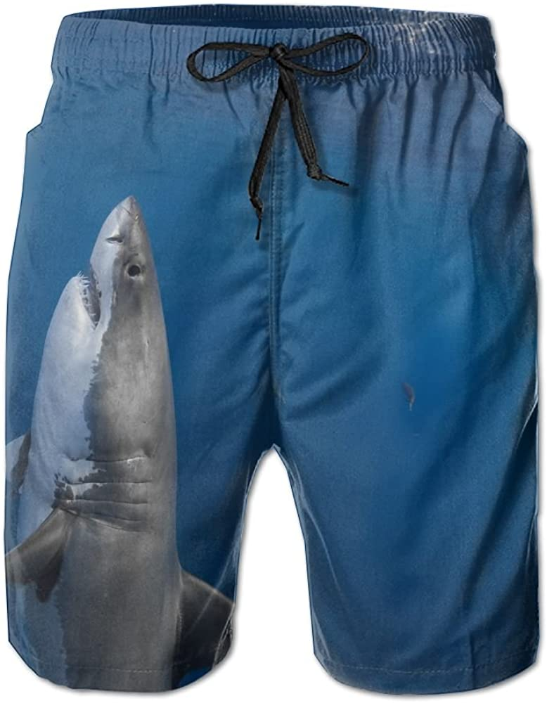 Shark Standing Newest Men's Swim Trunks Quick Dry Board Beach Shorts