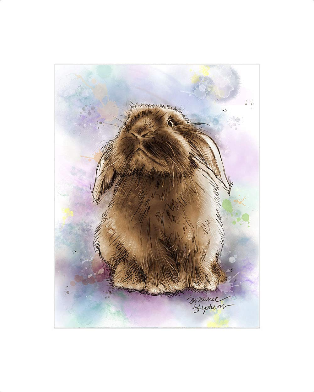 Holland Lop Bunny Rabbit Gift Print Of Art By Suzanne Stephens With Size Mat Options Handmade