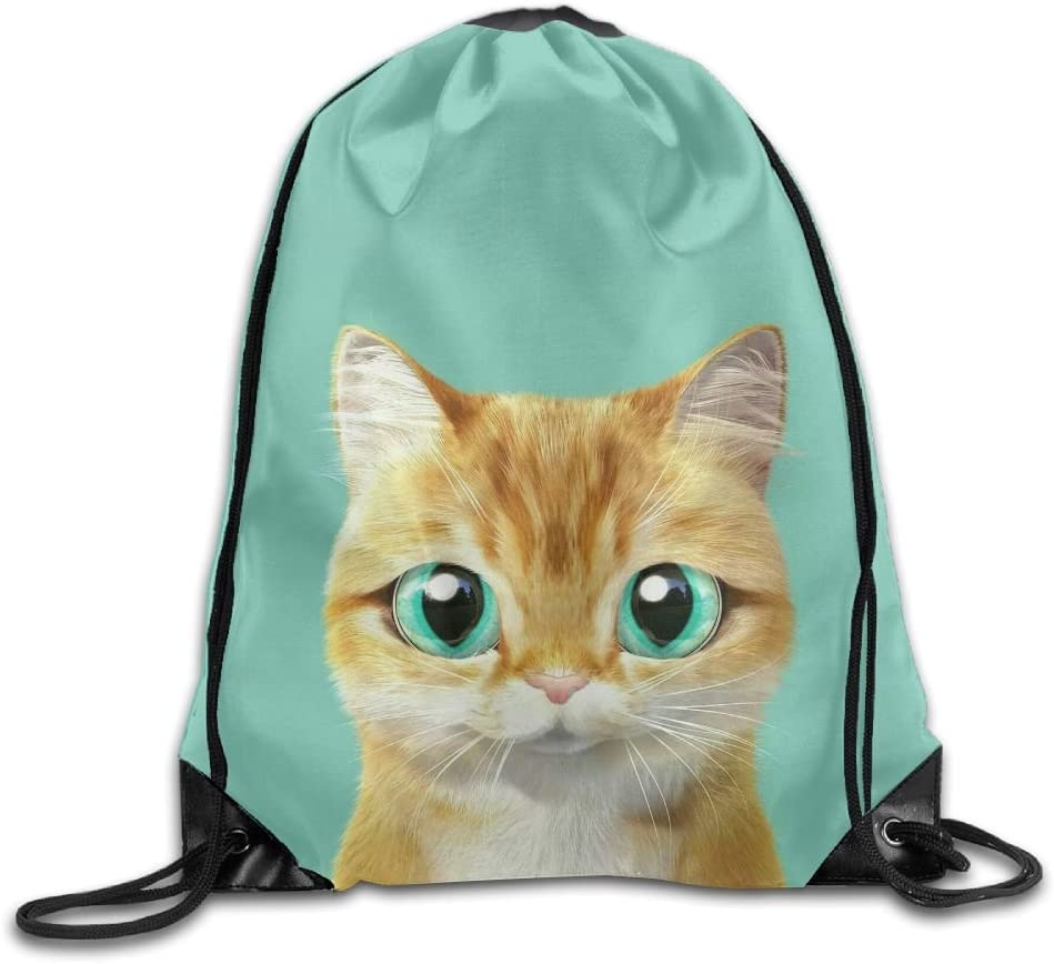 Cat Art Drawstring Backpack Rucksack Shoulder Bags Training Gym Sack For Man And Women