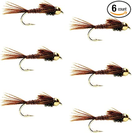 6 Pack Bead Head Pheasant Tail Nymph Fly