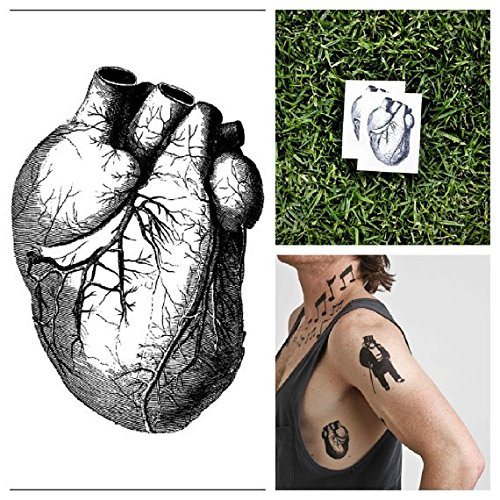 Tattify Human Heart Temporary Tattoo - An Actual Heart (Set of 2) - Other Styles Available - Fashionable Temporary Tattoos - Long Lasting and Waterproof