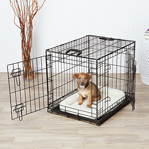 AmazonBasics-Double-Door-Dog-Crate-and-Padded-Bolster-Bed