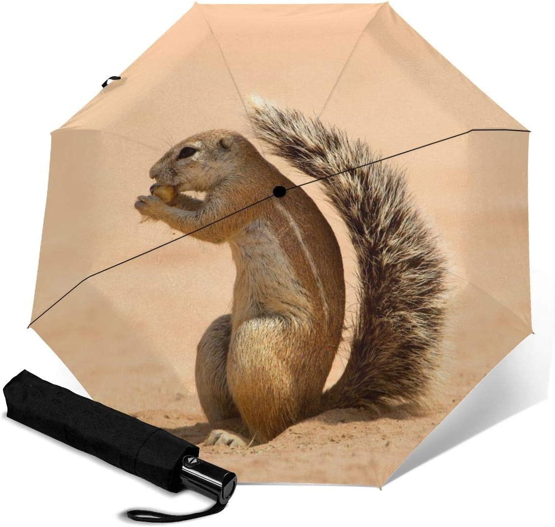 Ground Squirrel Automatic Open Folding Compact Travel Umbrellas For Women