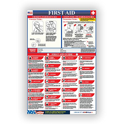 Osha4less First Aid Poster (990310)