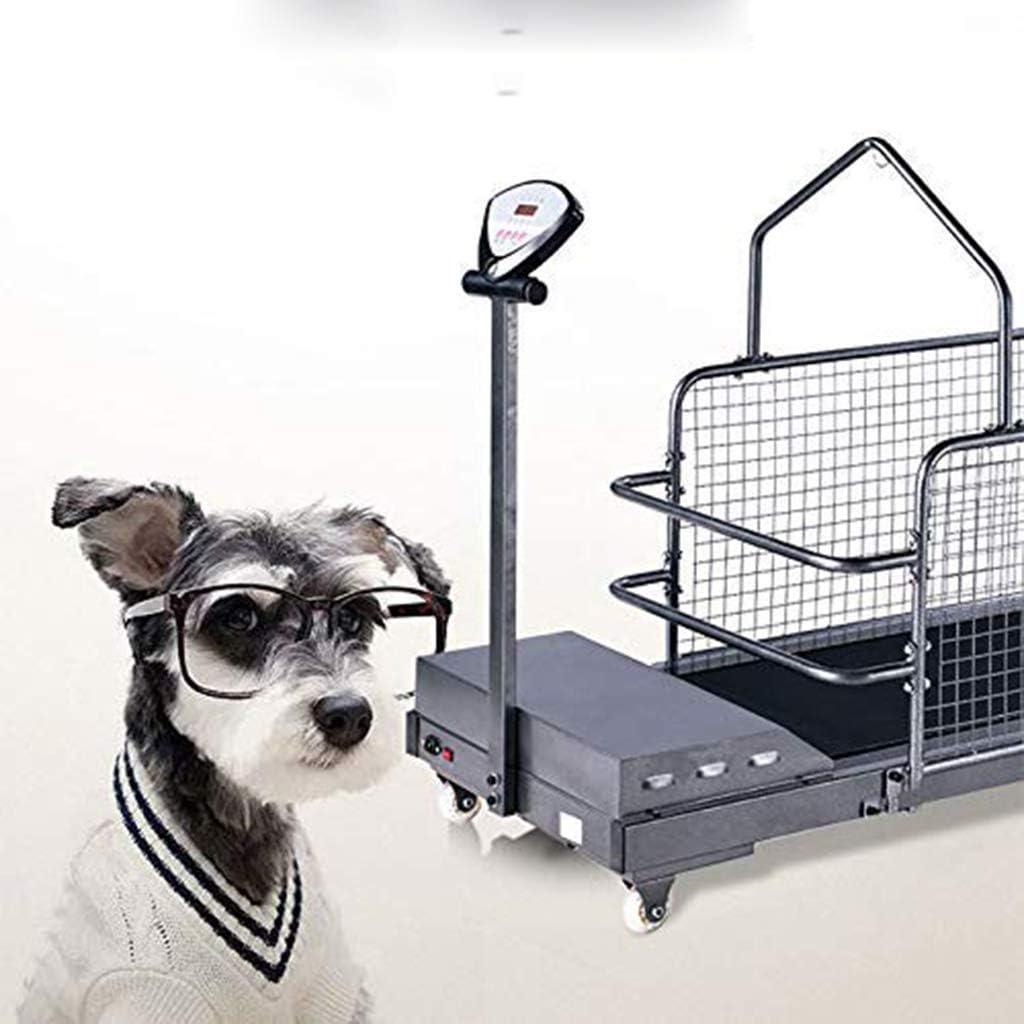 Artículos Para Ejercicios De Perros Cinta De Correr Para Mascotas ...