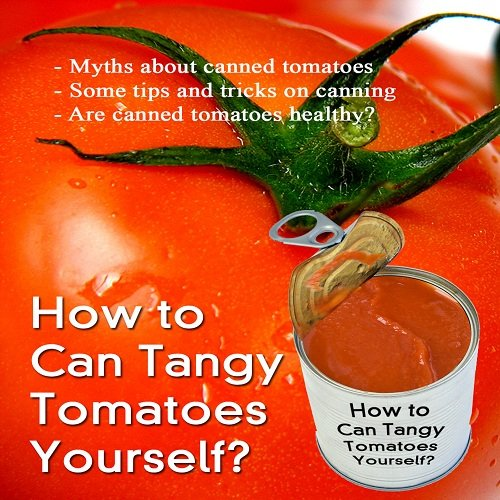 How to can tomatoes; Canning Tomatoes Is A Great Way To Preserve Such A Wonderful Fruit. You Will Be Surprised At How Simple It Really Is. How To Can Tomatoes Will Teach You Step-By-Step