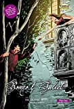 img - for Romeo and Juliet: Plain Text: The Graphic Novel (British English) book / textbook / text book