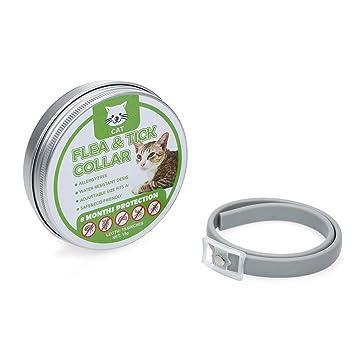 Hylotele Collar Repelente de Insectos para Gatos, Collares Antipulgas y Garrapatas,Tamaño Ajustable, Natural Aceite Esencial Ajustable Impermeable: ...