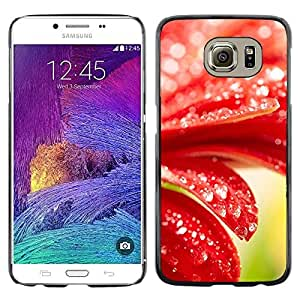 Be Good Phone Accessory // Dura Cáscara cubierta Protectora Caso Carcasa Funda de Protección para Samsung Galaxy S6 SM-G920 // Plant Nature Forrest Flower 98