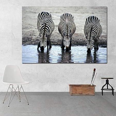 HANTAODG Impresión De La Lona Pinturas De Animales Cebras ...