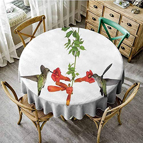 ScottDecor Food Round Tablecloth Hummingbirds Decor,Two Hummingbirds Sip Nectar from a Trumpet Vine Blossoms Summertime, Jacquard Tablecloth Diameter 70""