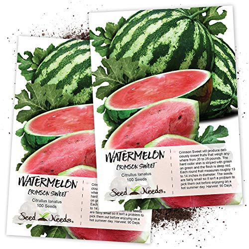 Crimson Sweet - Seed Needs, Crimson Sweet Watermelon (Citrullus lanatus) Twin Pack of 100 Seeds Each Non-GMO