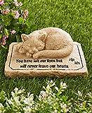 Pet Memorial Stones Cold Cast Ceramic Memorial Garden Backyard Flowers Greenery (Cat) Review