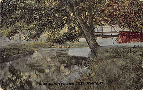 Reading Pennsylvania scenic birds eye view Wyomissing Creek antique pc Z20943
