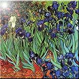 Rikki Knight Van Gogh Art Irises Design Ceramic Art Tile 8'' x 8''