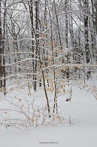 Read Online Journal Winter Weather Pretty Scene: (Notebook, Diary, Blank Book) (Seasonal Winter Photo Journals Notebooks Diaries) pdf