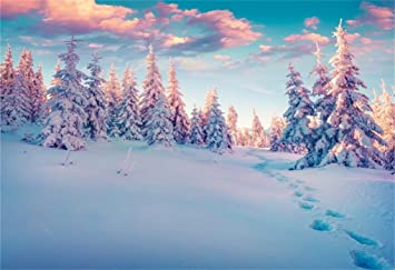 White Christmas Snow Background.Aofoto 8x6ft White Christmas Snowscape Backdrop Snow Covered