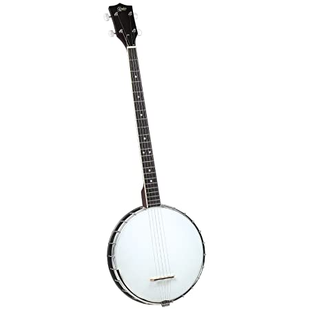 Amazon Com Rover Rb 20p Plectrum Open Back 4 String Banjo Musical