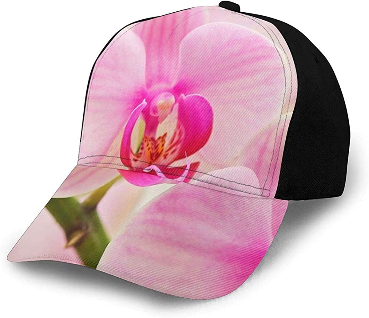 Pretty Pink Orchid Blooming Lightweight Unisex Baseball Caps Adjustable Breathable Sun Hat for Sport Outdoor