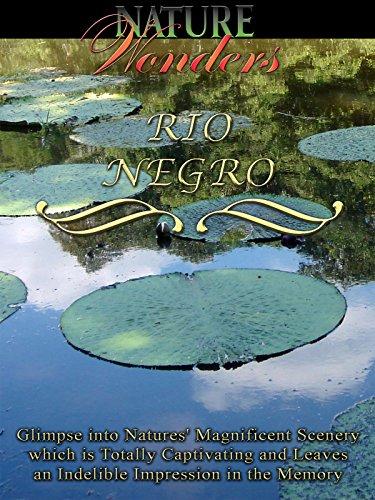 Nature Wonders - Rio Negro - Brazil