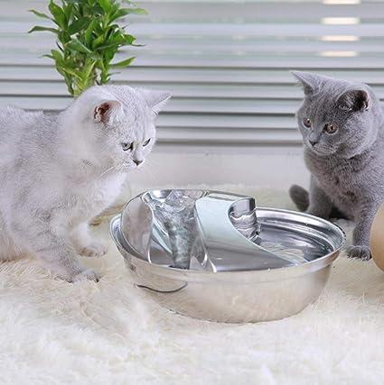 ZHIWEII Dispensador de Agua para Mascotas con circulación de ...